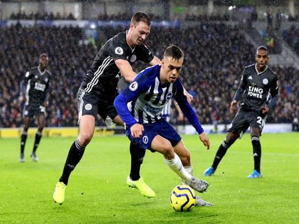 Nhận định Leicester City vs Brighton, 00h00 ngày 24/6